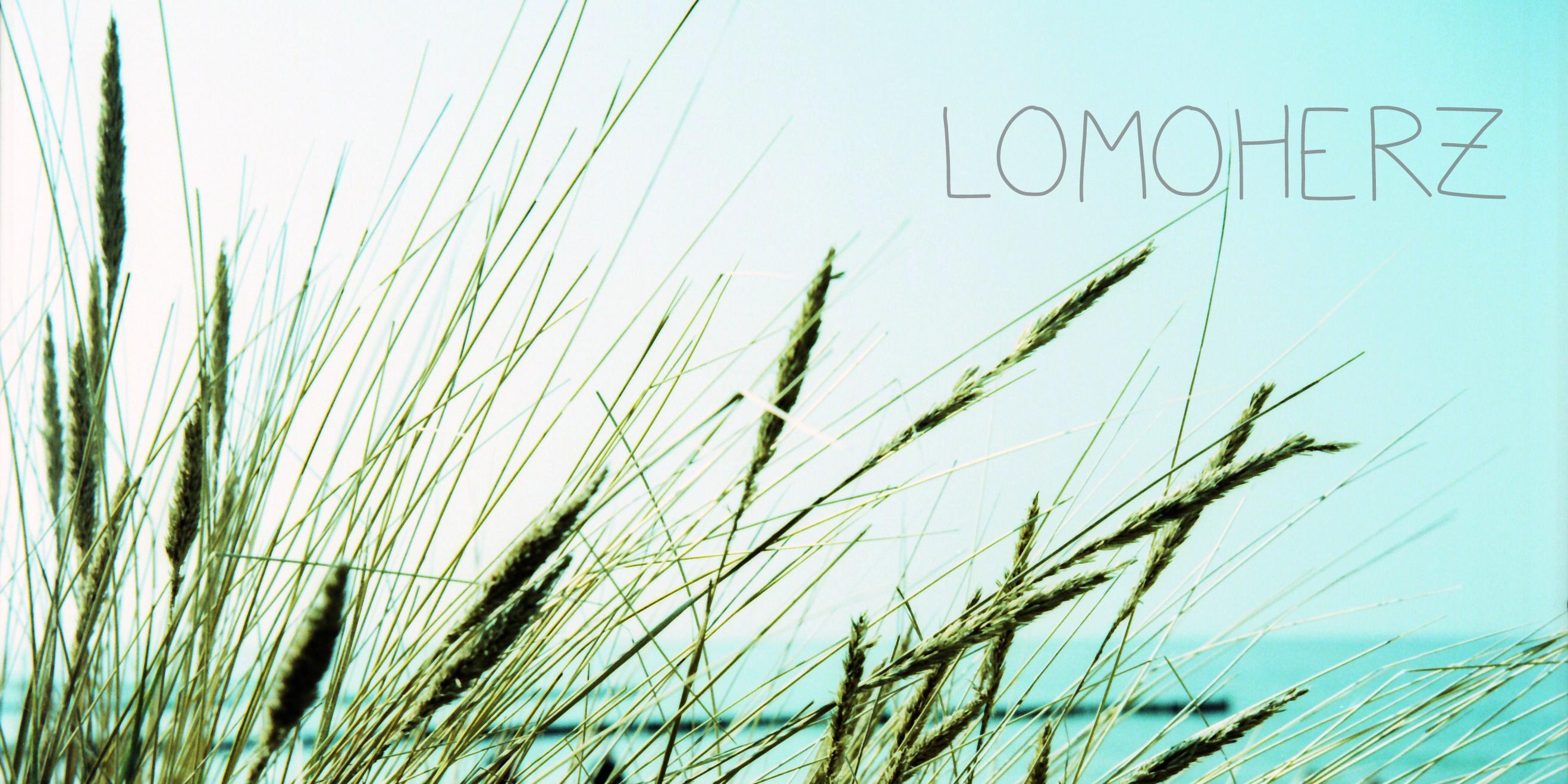 lomoherz2