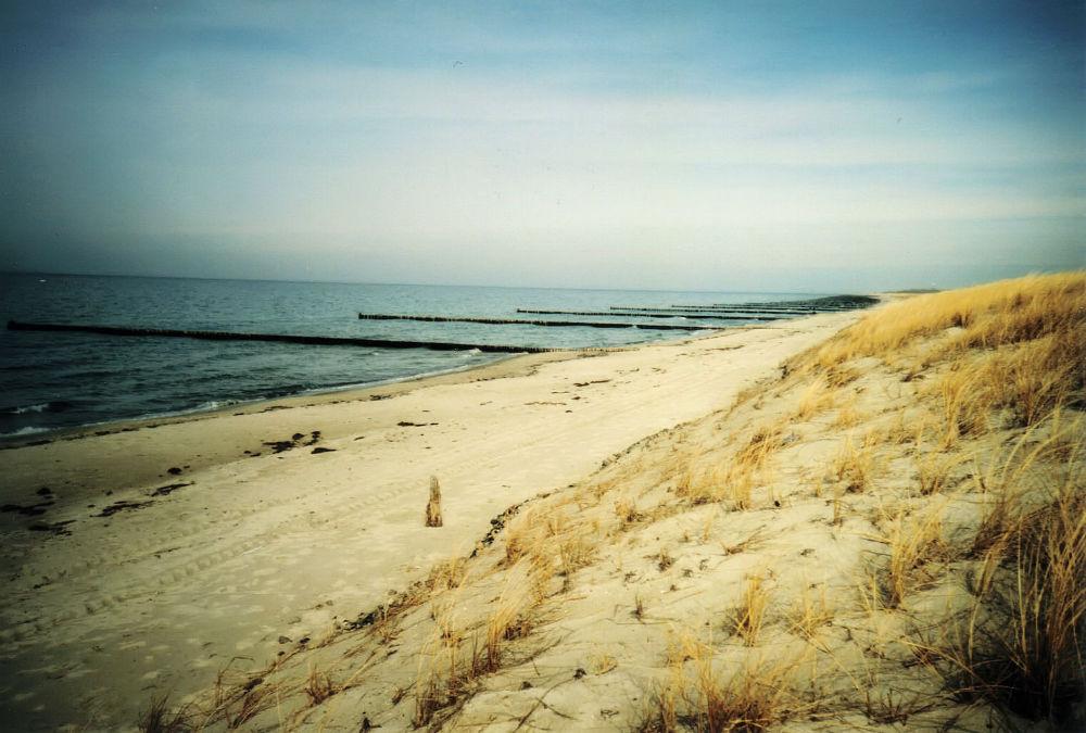 Strand (5)
