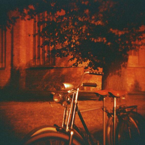 Fahrrad Diana F+ Ribnitz-Damgarten (c) Lomoherz