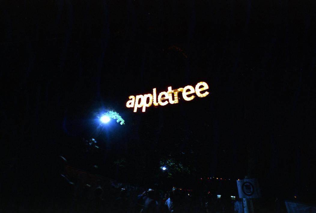 Appletree Garden Festival 14 (c) Lomoherz (2)