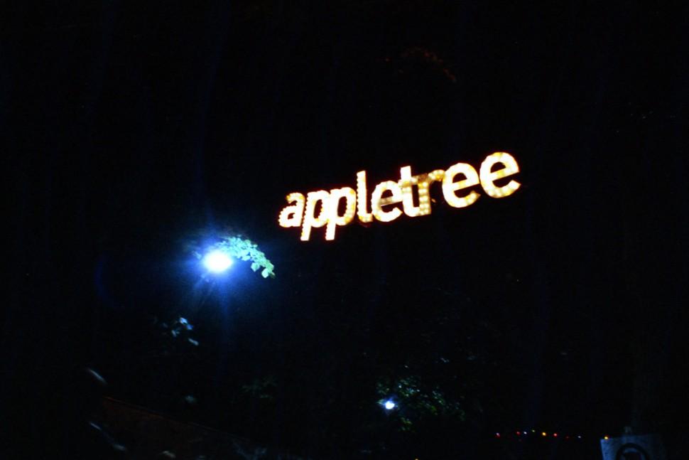 Appletree Garden Festival 14 (c) Lomoherz (26)