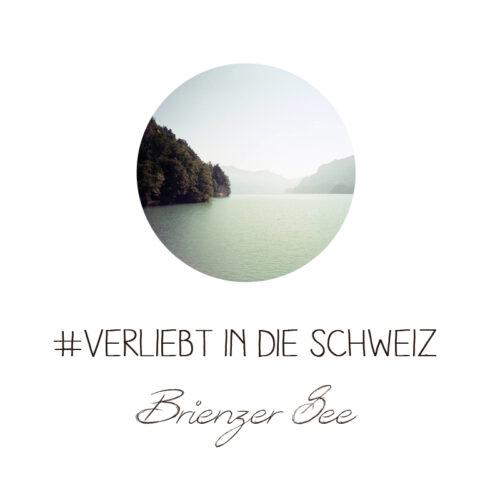 Schweiz Ballenberg Brienzer See Harder Kulm analog Lomoherz