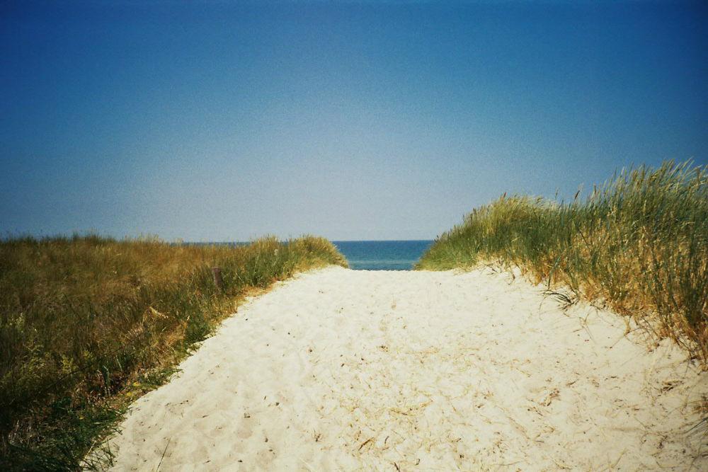 Sommer 15 (c) Lomoherz (13)