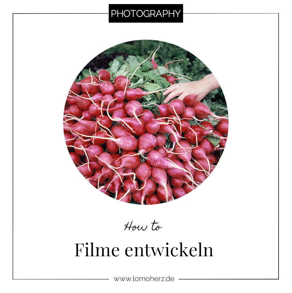 Filme_entwickeln_analog_Filmfotografie_(c)_Lomoherz