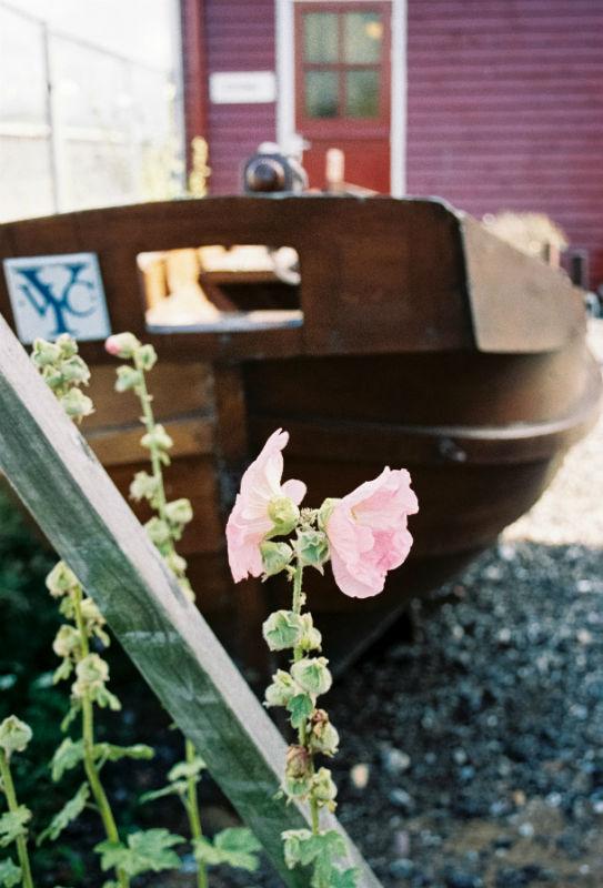 Harlingen Barentsz Wharf