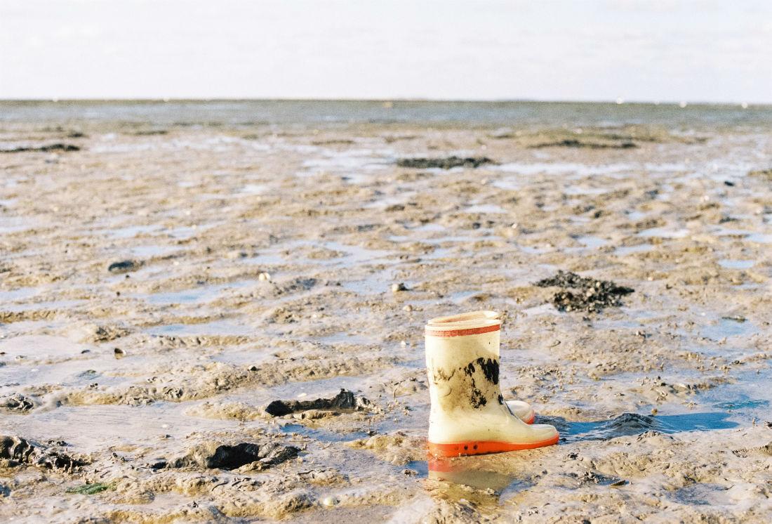 Texel Wattenmeer Lomoherz