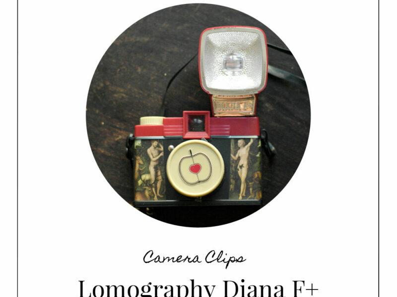 Kamerareview Diana F+ (c) Lomoherz