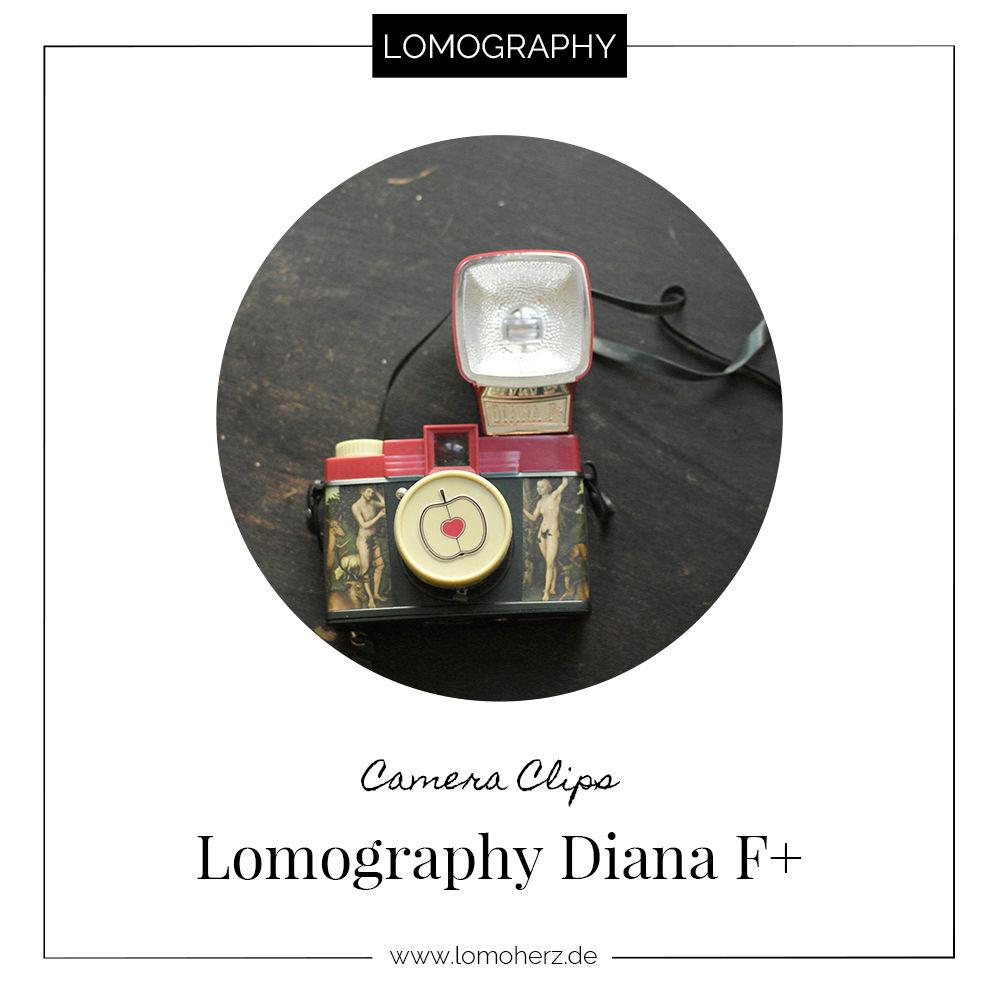 Kamera Review Diana F+ (c) Lomoherz