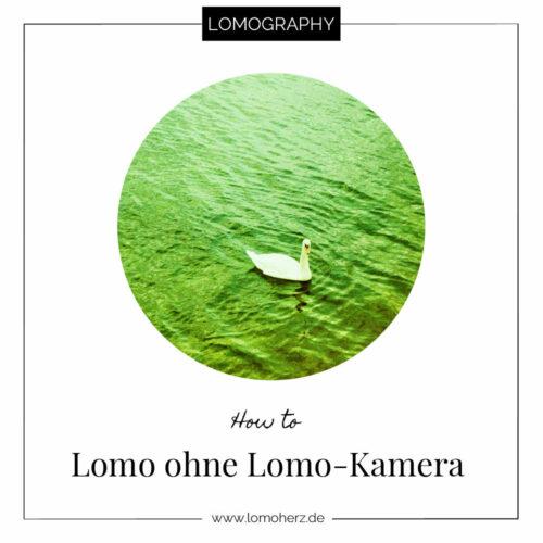 How to Lomo ohne Lomo-Kamera Lomography Lomoherz