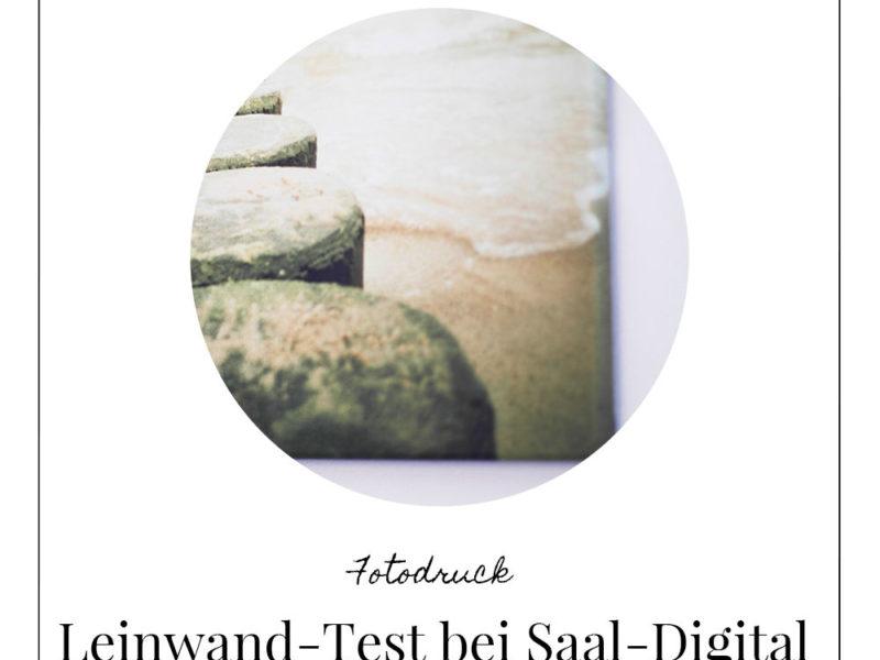 Leinwand-Test bei Saal-Digital Lomoherz